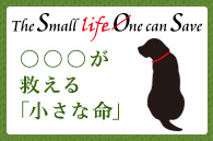 The Small life One can Save ○○○が救える「小さな命」